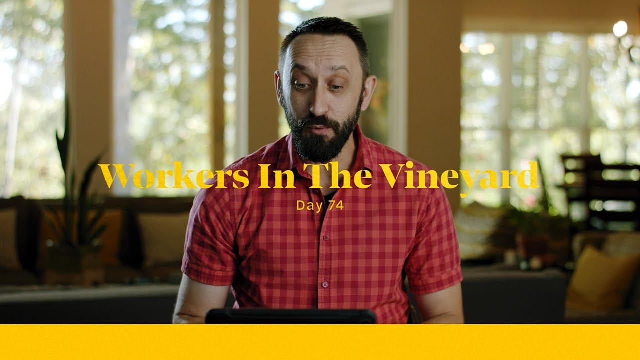 Workers In The Vineyard