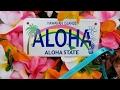 Haul: Aloha! Hawaii tea and Starbucks mugs