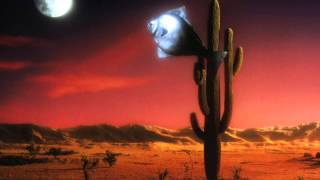 Arizona Dream Dreams