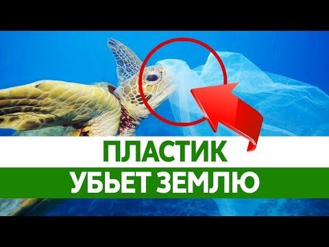 Как мусор влияет на окружающую среду