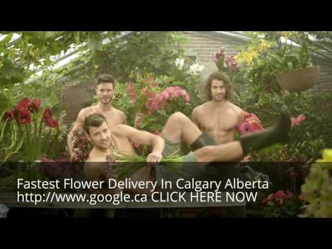 Same Day Flower Delivery Calgary Alberta