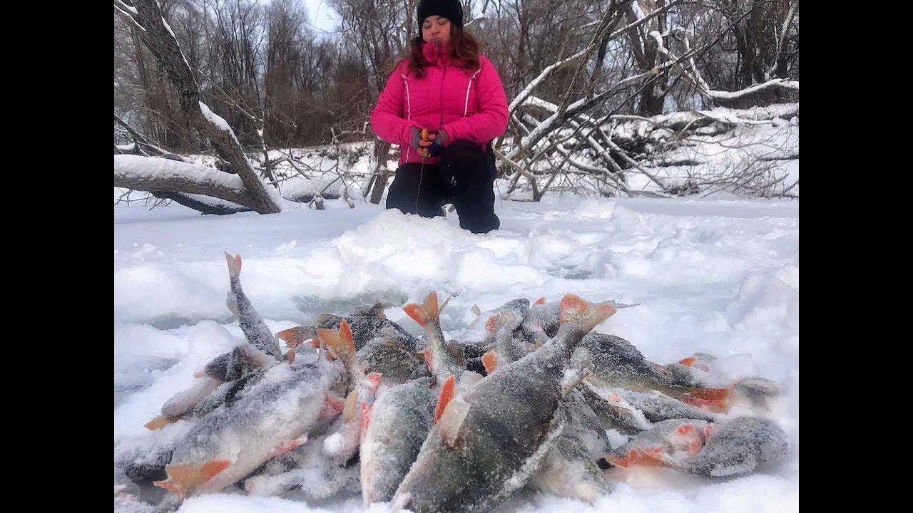 ВЗЯЛ МАШУ НА ДИКИЙ КЛЕВ ОКУНЯ НА БАЛАНСИР!!!Рыбалка на Алтае ,коряги, ,безмотылка, ловля язя.