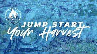 RainFire Church Online 11am: JUMP START YOUR HARVEST