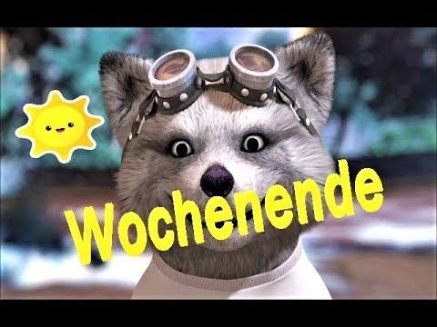 Guten Morgen Wochenende Schönes Wetter Facerig Deutsch Sonne