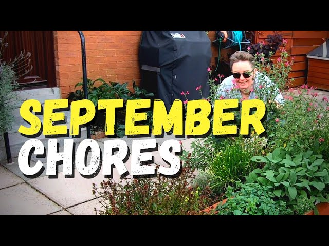 September chores : What am I doing this week