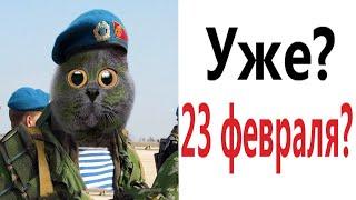Приколы КАК 23 ФЕВРАЛЯ Смешные видео от Доми шоу
