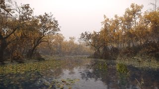 Creating a quick CRYENGINE Scene - 'Autumn River'