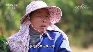 《道德观察(日播版)》 20191214 乡村女医生(下)| CCTV社会与法