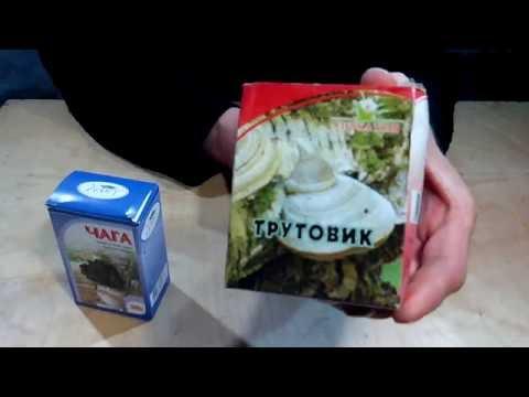 Купить лечебный гриб Рейши Алтайский: отзывы о приминении