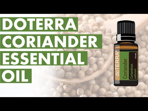 coriander-essential-oil:-remarkable-benefits-and-uses