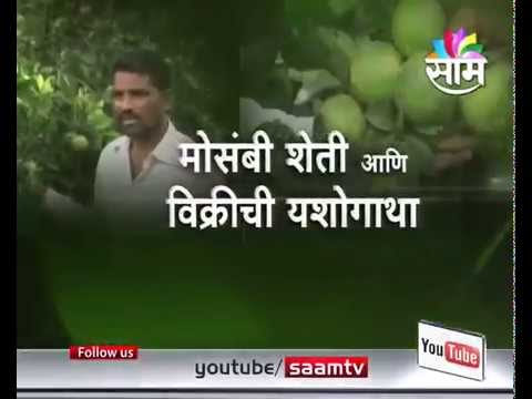 #AgrowonPromo:: Succes story Of Mr Uddhav Kute s sweet lime natural farming