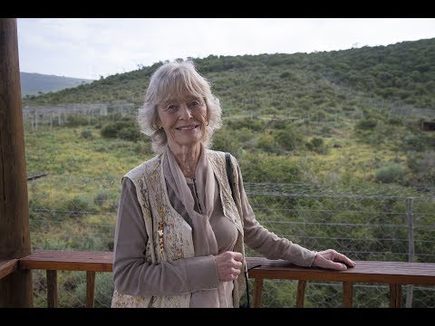 Virginia McKenna takes two lions 'home' to Africa (short version)
