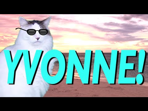 Happy Birthday Yvonne Epic Cat Happy Birthday Song