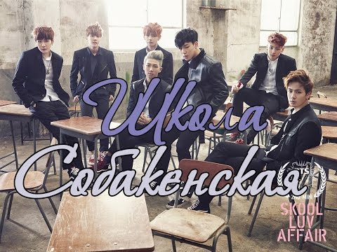 БТС Стёб.Cабы | BTS - Flower Boy Bangtan High School  | Школа Собакенская