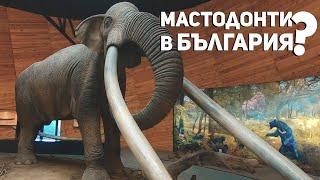 Скрити истории: Плиоценският парк в Дорково
