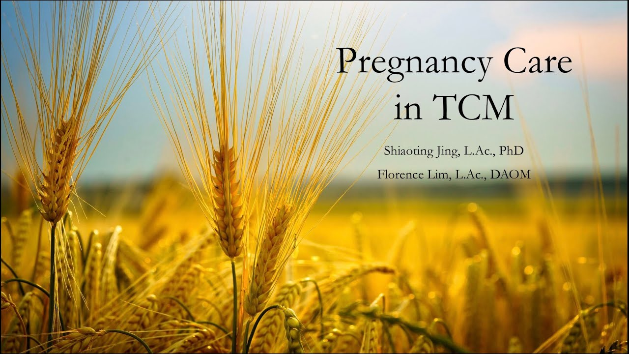 Pregnancy Care in Traditional Chinese Medicine