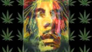 Bob Marley - Buffalo Soldier (remix)