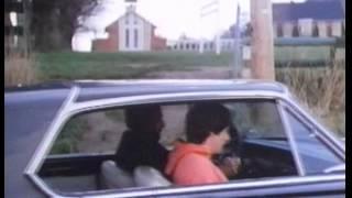 Ups & Downs 1981