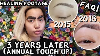 MICROBLADED EYEBROW UPDATE | OILY SKIN ANNUAL TOUCH UP | 3 YEARS LATER
