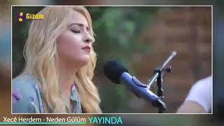 Xecê Herdem Neden Gülüm   Yeni 2018 (akustik)