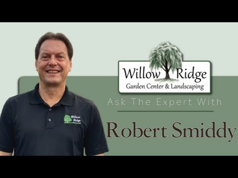 How Much Does It Cost To Hire A Landscape Design Expert Youtube