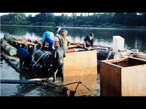 Salvaging New Zealand's Last Paddlesteamer  1993