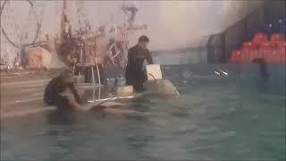 В дельфинарии в Волгограде.