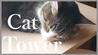 まったり癒し猫【イージーリスニング】