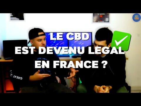 LE CBD EST-IL DÉSORMAIS LÉGAL EN FRANCE ? AFFAIRE KANAVAP - CBDébat