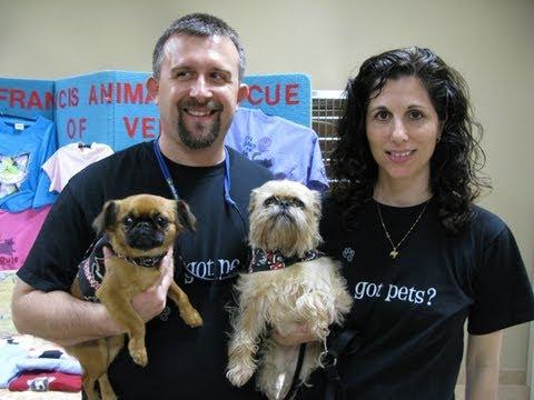 Pet Adoption at North Port Animal Hospital