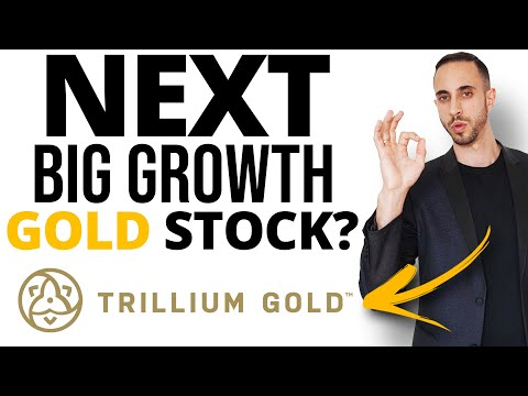Will Trillium Gold Discover The Next Big Gold Discovery in Red Lake? (Multi Million Ounce Potential)