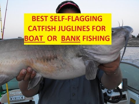 BEST SELF FLAGGING CATFISH JUGLINES FOR BOAT OR BANK FISHING