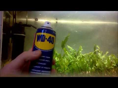 WD-40 на карася, миф? Эксперимент в аквариуме...или мотыль круче ...