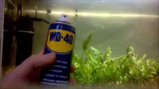WD-40 на карася, миф? Эксперимент в аквариуме...или мотыль круче!?