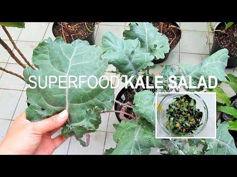 SUPER LEAFY GREEN Kale Salad with Lemon Dressing