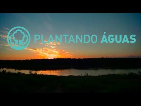 Plantando Águas