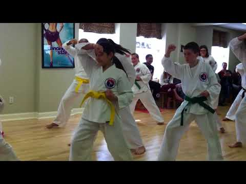 Bridges Martial Arts - RiverBend Academy Demonstration - Basics