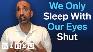 Sleep Expert Debunks Common Sleep Myths   WIRED