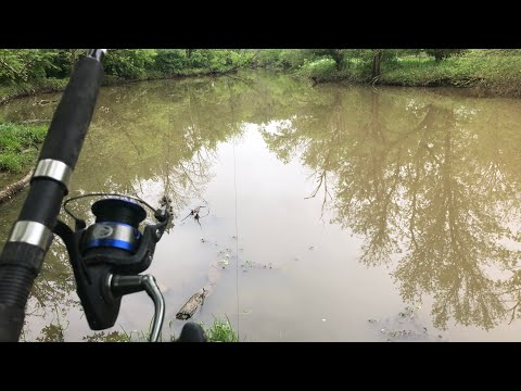 Catching Monster Fish In A New River (Ohio Fishing)
