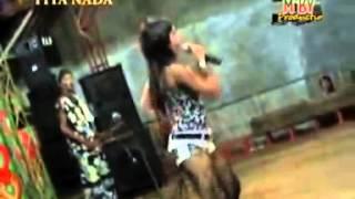 Organ Tunggal Tita Nada Pilihan - Laba Laba MP3