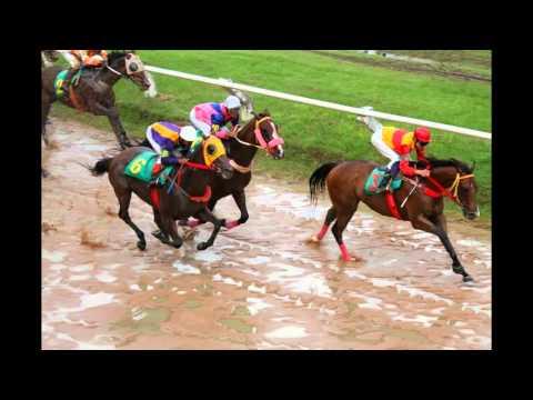 บรรยากาศการแข่งม้าชิงโล่เกียรติยศ มทภ.2 ระยะ45.5เส้น