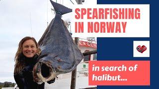 Halibut Spearfishing in Norway Палтус Подводная Охота в Норвегии