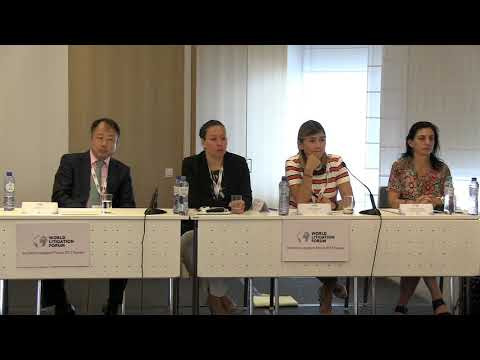 Session 7:  Questions and Answers - 3rd World Litigation Forum 2017 Europe