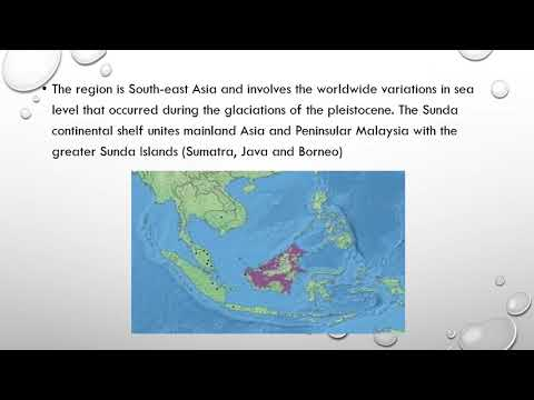 Phylogeographic Structure in Mitochondrial DNA of a South east Asia Freshwater Fish