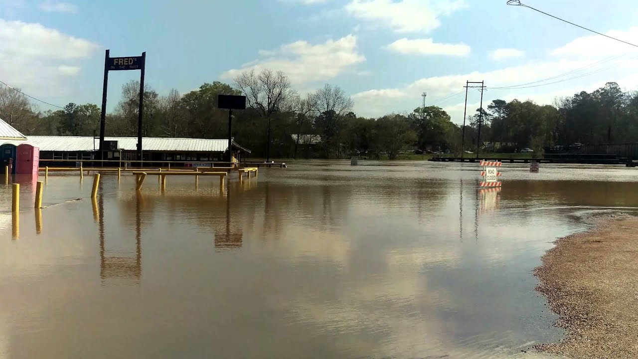 amite river stage at port vincent
