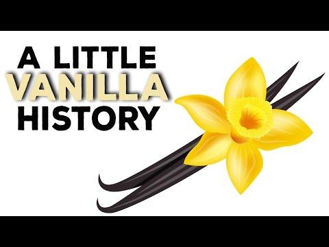 A Little Vanilla History | DIY Eliquid & Beyond