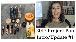 2017 Project Pan- Intro/Update #1