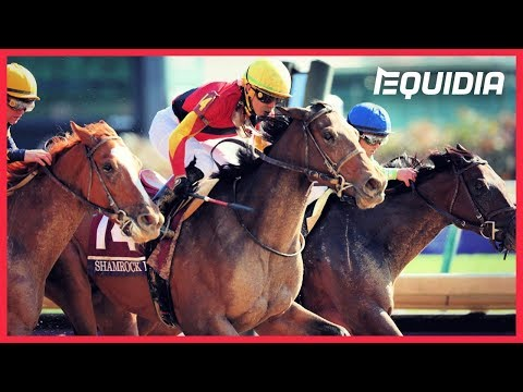 Accelerate - The Breeders' Cup Classic - 03/11/2018