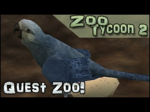 Quest Zoo! Nesting Pairs of Spix's Macaws - Episode #17