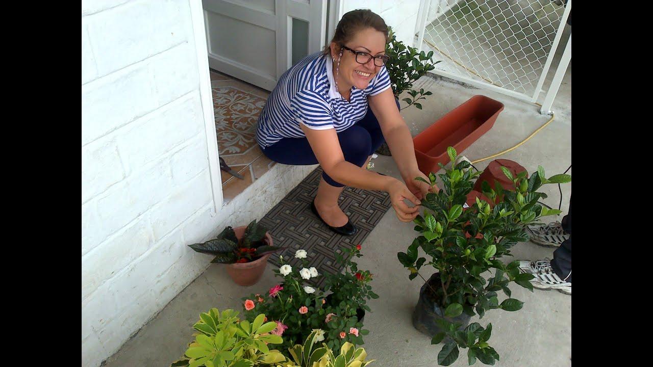 Realizando el jardin de mi casa youtube - El jardin en casa ...